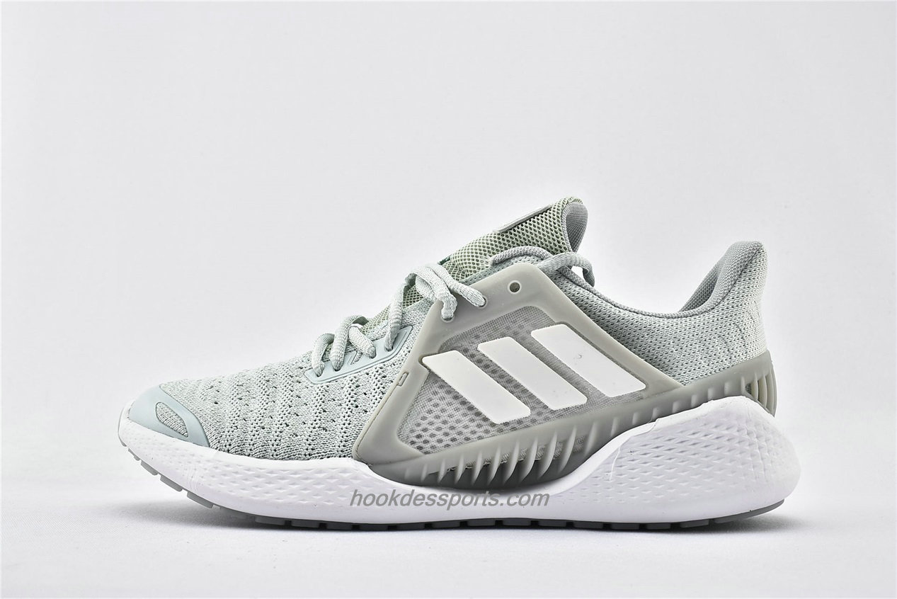 Chaussures Adidas ClimaCool Vent Summer Rdy LTD EG1120 Gris / Blanc